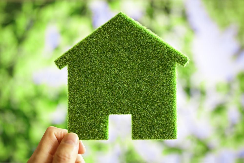 Steigerhout milieuvriendelijk